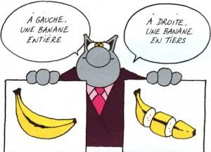 le chat_banane